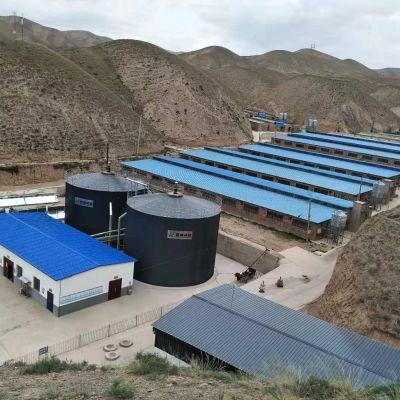 PowerLink   500kW Biogas Power Generation Project in mountian