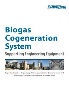 Biogas cogeneration system