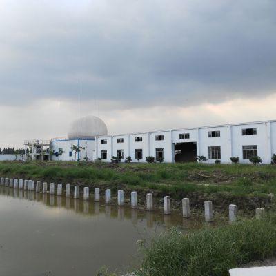 Powerlink Gas-Holder gas cogeneration