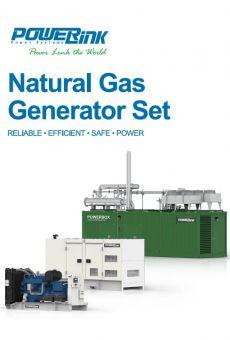 PowerLink Natural Gas Generator