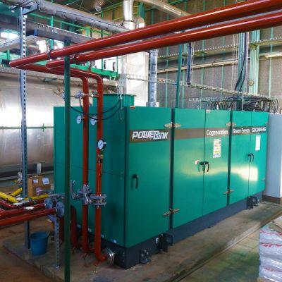 PowerLink   200kW Biogas Power Generation Project