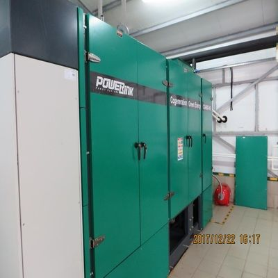 Russian 400kw Natural Gas Power Generation Project-3